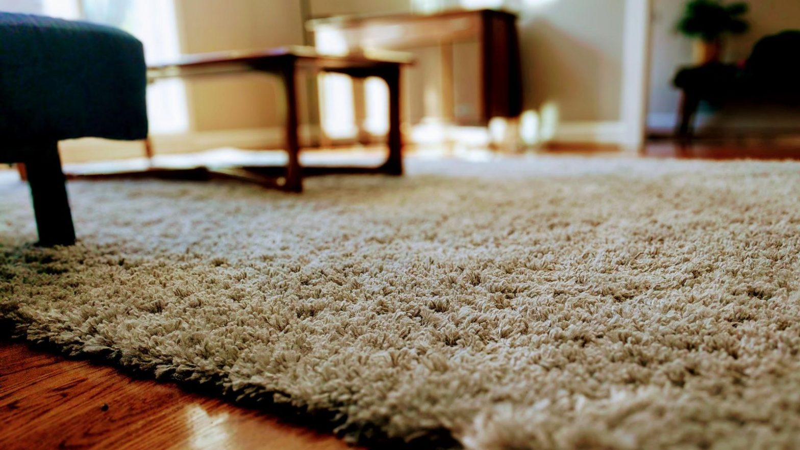 Carpet Cleaning Services and Products